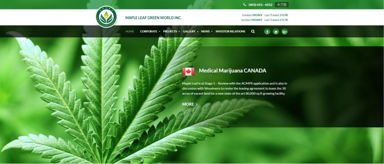 Maple Leaf Green 北美投资风口 合法化大麻产业正当时 Nai500 北美