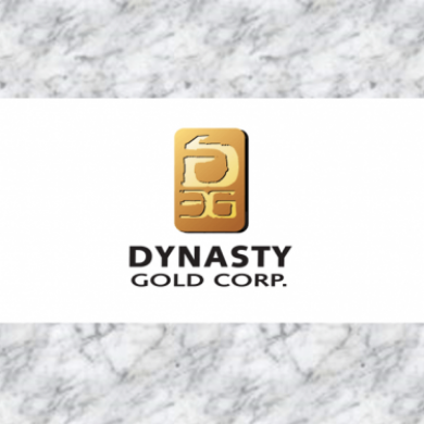 Dynasty Gold Raises $100,000 Through a Private Placement