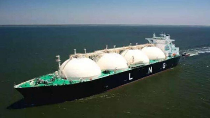 China LNG growth not slowing, says Woodside CEO