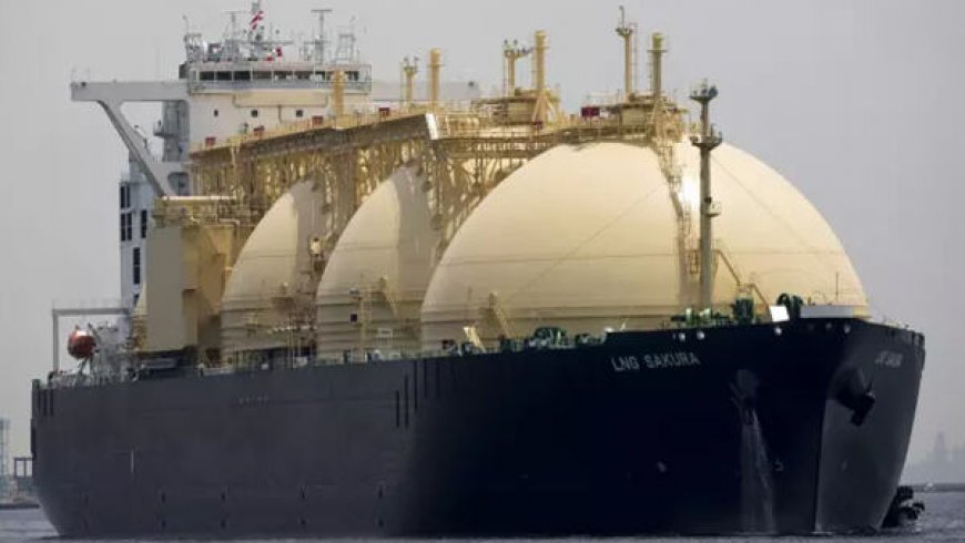 Commodity traders sharply increase LNG presence
