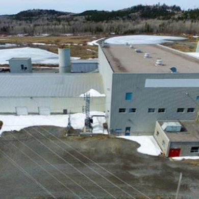 加拿大初級礦業公司市值今年增長6%