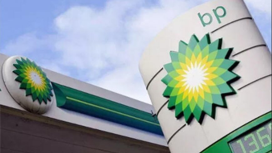 BP invests in Chinese electric vehicle charging platform