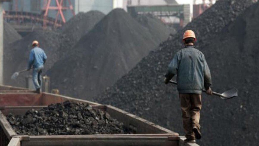 China's coal output hits highest in over 3 years as mines start up
