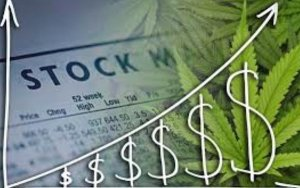 Three Cannabis Stocks that Could Benefit from S. 420 in Congress,美国国会提出S.420提案,大麻股将受益