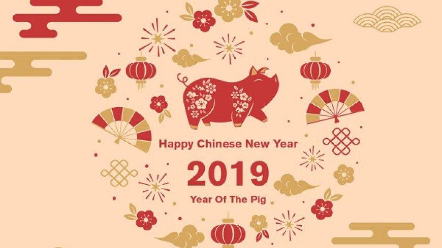 NAI Interactive Ltd.北美投资讯息有限公司恭祝大家新年快乐!猪事顺利!