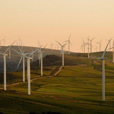 綠色新政蘊藏著哪些投資機會?