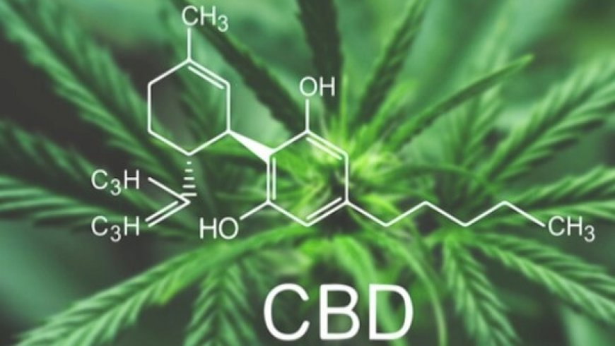 Despite a Lack of Research, CBD Remains Popular