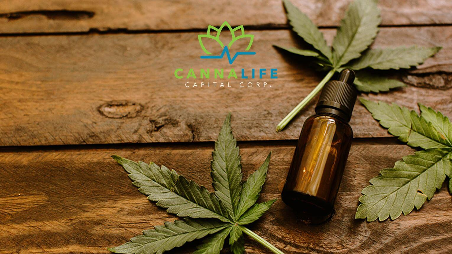 Cannalife Capital Corp 1
