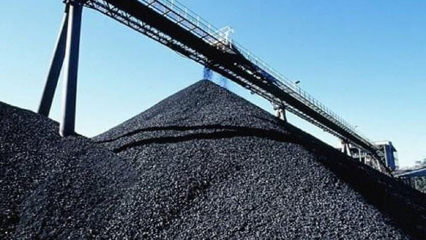 China has not changed coal import policy this year – customs official