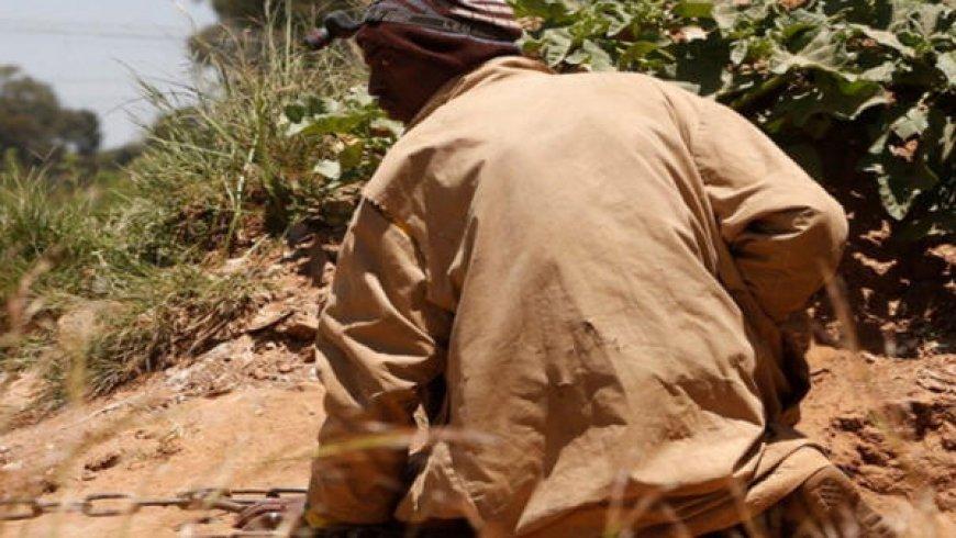 More Than 40 Million People Work in Artisanal Mining: Report