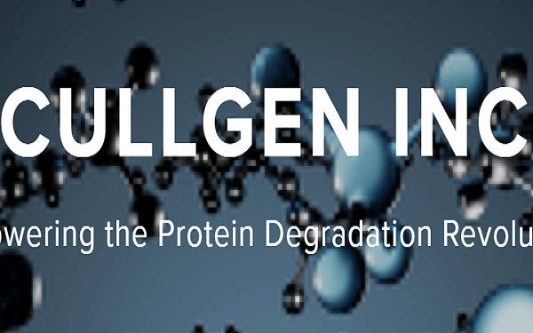 Cullgen獲$1600萬A輪融資,推動靶向蛋白質降解劑開發