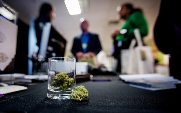 科技和大麻股:股票投资的高成长性组合