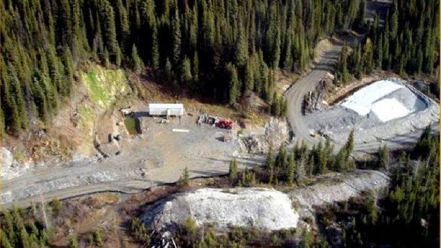 Barkerville更新Cariboo黄金项目的地下资源量