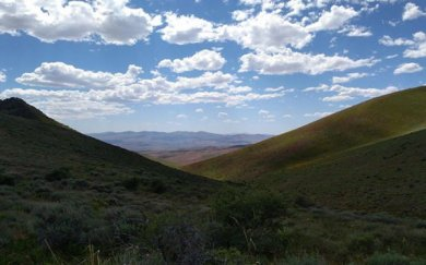 Contact Gold raises C$4m to drill Pony Creek, stock jumps