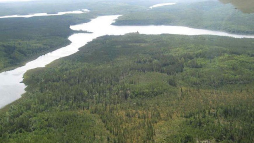 Forum Energy Metals inks $30m option with Rio on Janice Lake
