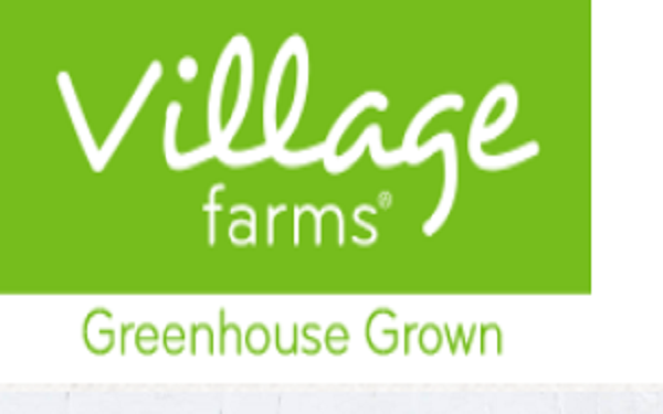 Village Farms International Expands U.S. Outdoor Hemp Cultivation and CBD Extraction Program to Colorado Through New Joint Venture, Arkansas Valley Green and Gold Hemp,Village Farms与AV Hemp在科罗拉多州成立大麻合资企业