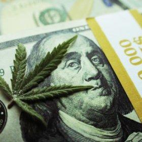 跑马圈地时代,哪些大麻公司拥有更高的利润率?