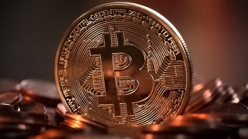 周一说市场: 比特币,数字黄金?郁金香球茎?答案正在浮现