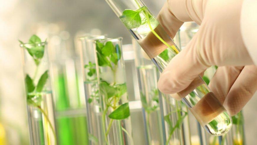 2019年迄今股价涨幅最大的5只生物科技股,最高超过800%
