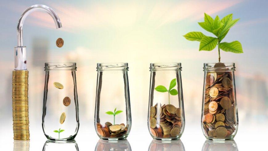 前车之鉴,成长型投资者需要吸取的两个重要教训