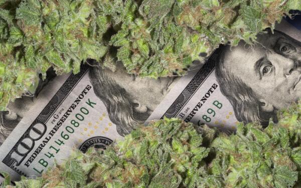 財報逐步出爐,二季度實現營業利潤的3只大麻股