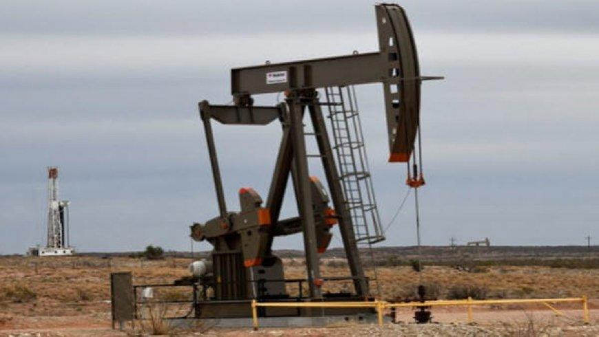 Oil rises 0.7% as Wall Street rebounds, but weak OPEC outlook caps gains