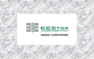 EEStor Corporation Announces Delay of Annual Filings