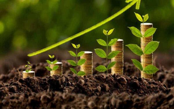 大麻股 Canopy Growth 黄金股 巴里克黄金Barrick Gold