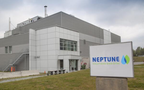 大麻提取公司 Neptune Wellness