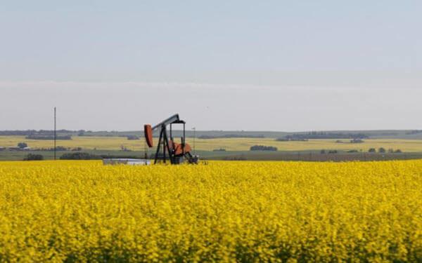 阿尔伯塔省中小石油生产商