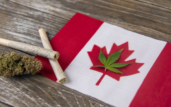 加拿大大麻股 Aphria 每股收益预期