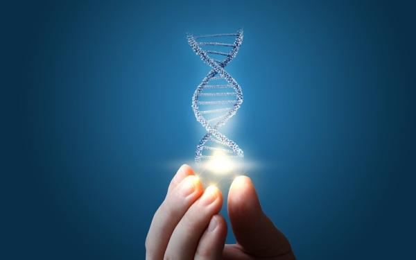 基因编辑概念股