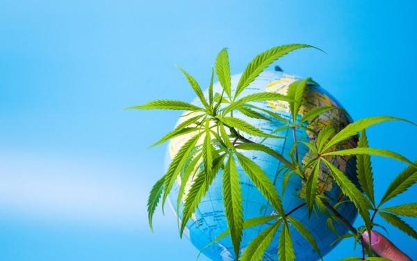 全球大麻销售额