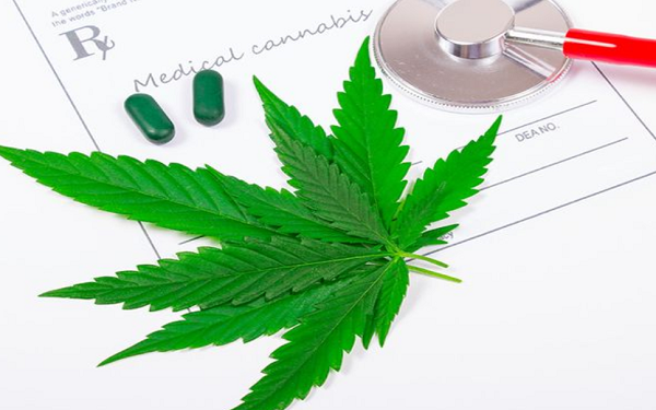 中国雅本化学涉足国际大麻业务
