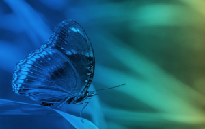 Innovative Cellular Therapeutics ICT