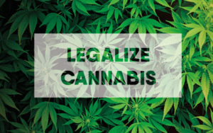 北美大麻合法化
