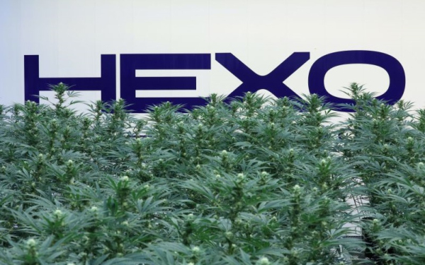 大麻股HEXO