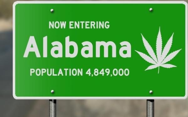 北美大麻行业