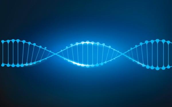 基因测序龙头