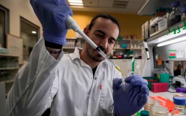 世卫组织:正在研制至少20种新冠病毒疫苗,确保人人接种