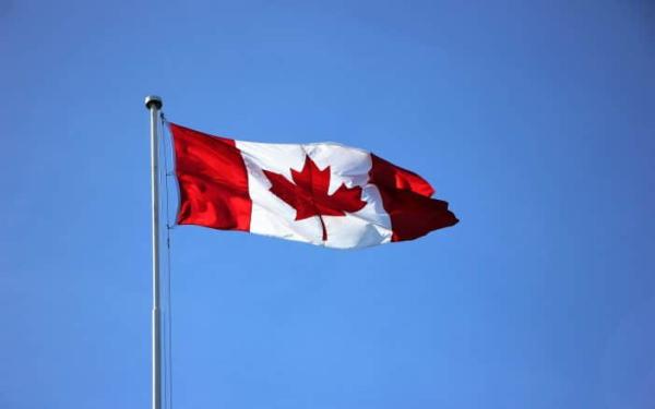 加拿大LEEFF