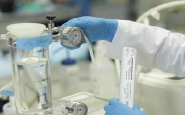 默克疫苗重磅举措,与知名医学院推进新冠肺炎疫苗制造