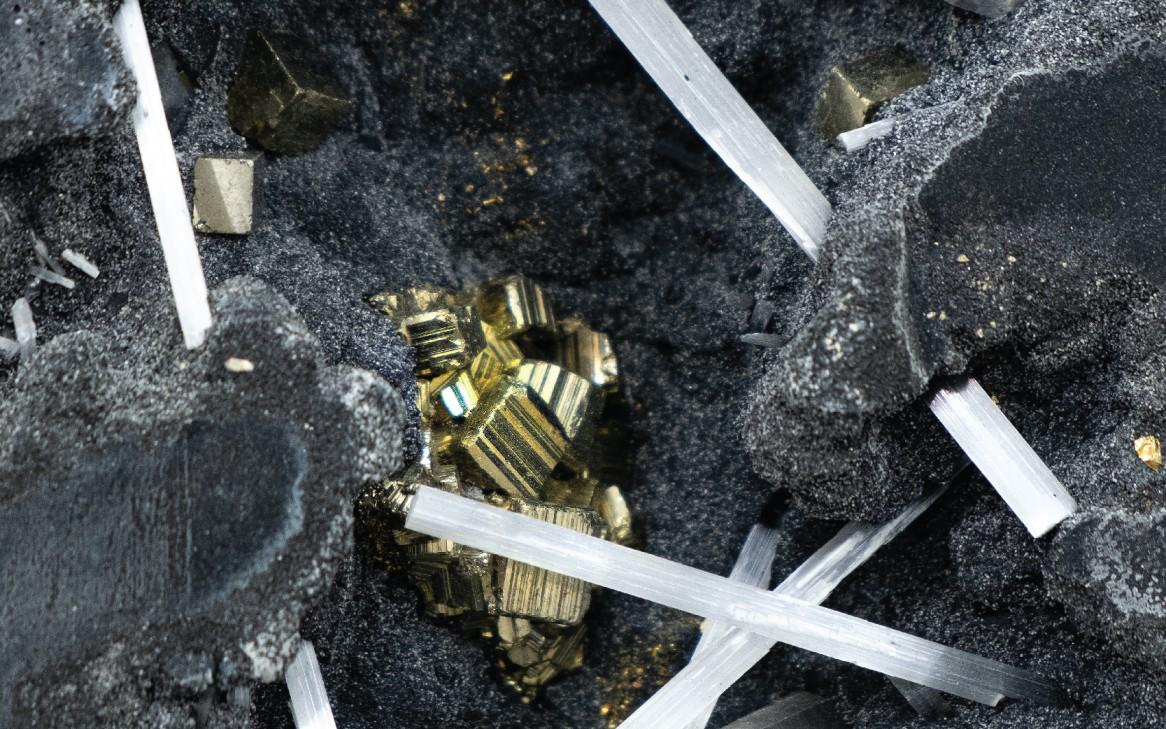 金礦黃金生產商