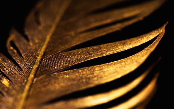 金价周二盘中再度站上每盎司2000美元