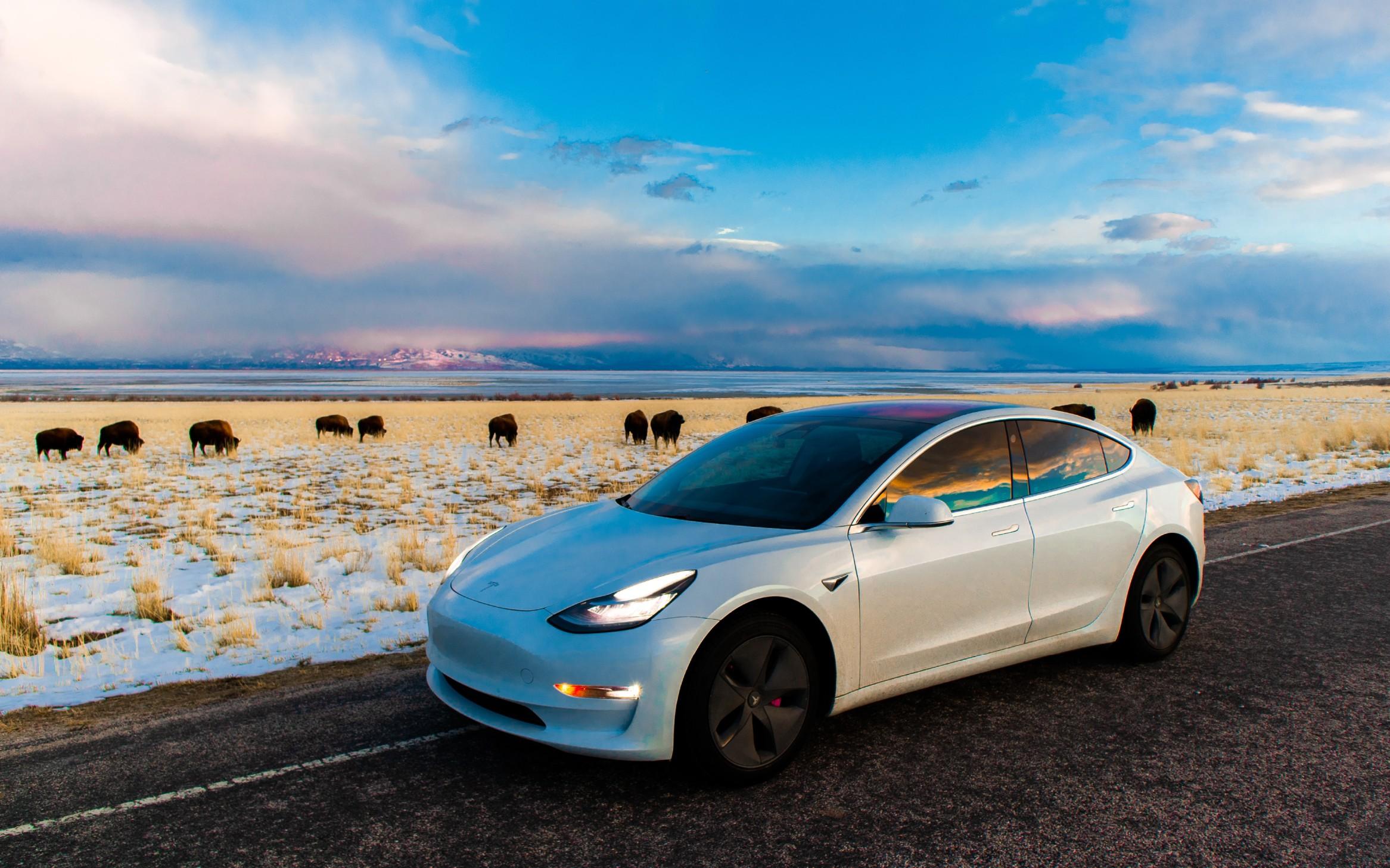 这家CSE公司为全球电池市场带来革命性变革,背后推动者是谁?  Electric Vehicle Batteries Technology (CSE:ACDC)