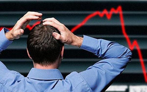 市场大跌期间该买什么股