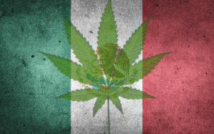 大麻合法化