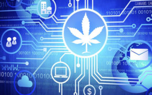 Global Cannabis Applications Corp. (GCAC)本周推出Uniswap代币