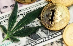 大麻行业的金融需求