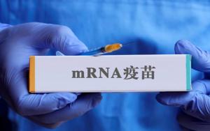中国首款mRNA疫苗将进入最后一期试验